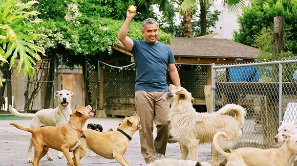 Cesar Millan at Benedum Center