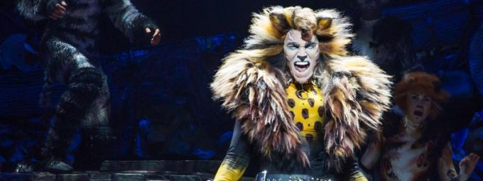 Cats at Benedum Center